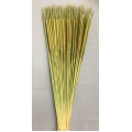 Pencil Cattails Moss (100)