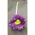 "Mini Africa Daisy Purple D:2.5"" L:8"""