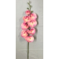 """Coated Orchid Pink 33"""""""