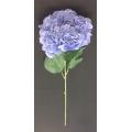 "Hydrangea Purple 34"""