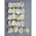 """Paper Rose Cream 1"""" (20)"""