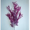Glittter Spray Purple