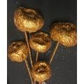 Talami Copper Glitter (5)