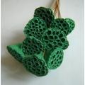 Lotus Pods Sparkle Green (12)
