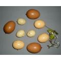 "Eggs Mixed BR. NA. CR 1.5""-2.5"" (9)"