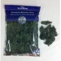Preserved Spanish Moss Dark Green 8 oz.